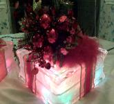 Lighted Christmas Tree Block